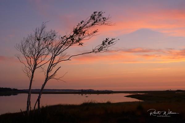 Sunrise, Castalia Marsh