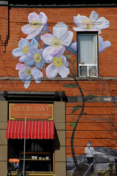 Mural on Brick Building, Bank Street, Ottawa