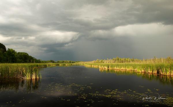 Storm over Mer Bleue marsh