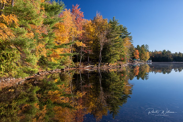The Shoreline in Fall