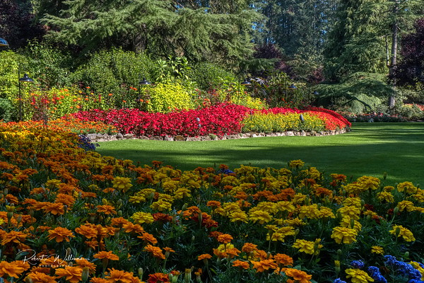 Flower Beds in the Sunken Garden, Butchart Gardens