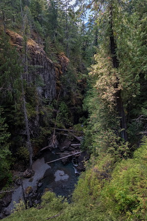 The Gorge Downstream from Lady Falls