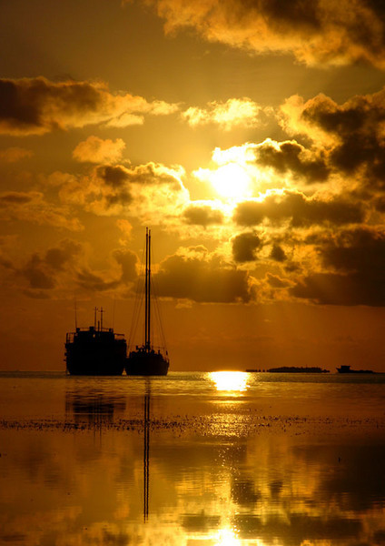 "<a href=""http://www.photographycorner.com/forum/showthread.php?t=15545"">A Golden Sunset</a> by <a href=""http://www.photographycorner.com/forum/member.php?u=3191"">Raalhu</a>"