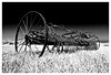 "<a href=""http://www.photographycorner.com/forum/showthread.php?t=11133"">Crop Reaper</a> by <a href=""http://www.photographycorner.com/forum/member.php?u=229"">William</a>"