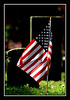 """<a href=""""http://www.photographycorner.com/forum/showthread.php?t=27190"""">Never Forgotten</a> by <a href=""""http://www.photographycorner.com/forum/member.php?u=3565"""">Spicoli</a>"""