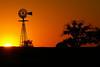 "<a href=""http://www.photographycorner.com/forum/showthread.php?t=45188"">Beautiful Kansas Sunset</a> by <a href=""http://www.photographycorner.com/forum/member.php?u=3562"">kscwgrl</a>"