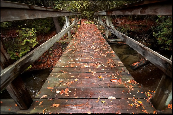 Fall Bridge by carroll1