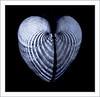 Broken Heart by Susan