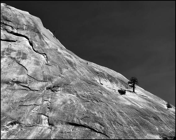 Yosemite by Susan