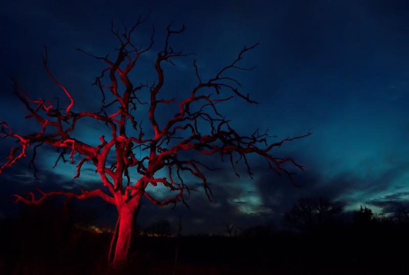 Bloody Oak by DDAY