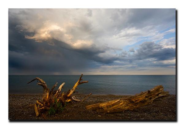 "<a href=""http://www.photographycorner.com/forum/showthread.php?t=85469"">Incorrect Prediction</a> by <a href=""http://www.photographycorner.com/forum/member.php?u=3565"">Spicoli</a>"