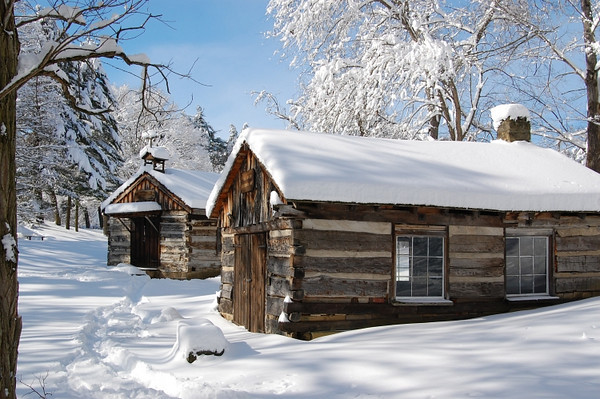 """<a href=""""http://www.photographycorner.com/galleries/showphoto.php/photo/35106"""">Snowed</a> by <a href=""""http://www.photographycorner.com/forum/member.php?u=8163"""">jlwr1958</a>"""