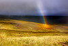 "<a href=""http://www.photographycorner.com/forum/showthread.php?t=93113"">No Pot of Gold!!</a> by <a href=""http://www.photographycorner.com/forum/member.php?u=6739"">realimage</a>"