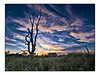 "<a href=""http://www.photographycorner.com/forum/showthread.php?t=94882"">From the Fields at Dusk</a> by <a href=""http://www.photographycorner.com/forum/member.php?u=12688"">jaharris1001</a>"