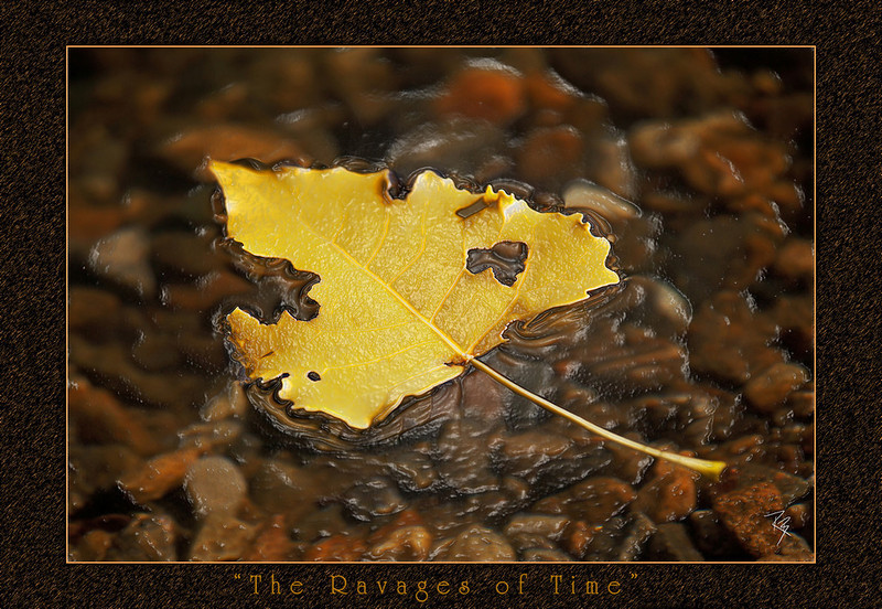 """<a href=""""http://www.photographycorner.com/forum/showthread.php?t=93876"""">The Ravages of Time</a> by <a href=""""http://www.photographycorner.com/forum/member.php?u=17281"""">RandyBrogen</a>"""