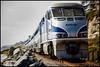 "<a href=""http://www.photographycorner.com/premiere-membership"">Amtrak (Premiere Project #105 Winner)</a> by <a href=""http://www.photographycorner.com/forum/member.php?u=20013"">OrvSal</a>"