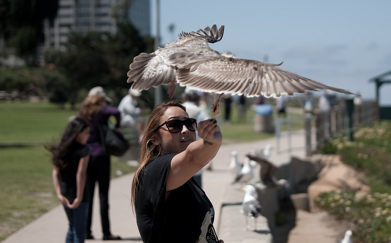 "<a href=""http://www.photographycorner.com/forum/showthread.php?t=98064"">My Better Half Feeding the Gulls</a> by <a href=""http://www.photographycorner.com/forum/member.php?u=20045"">MannyC</a>"