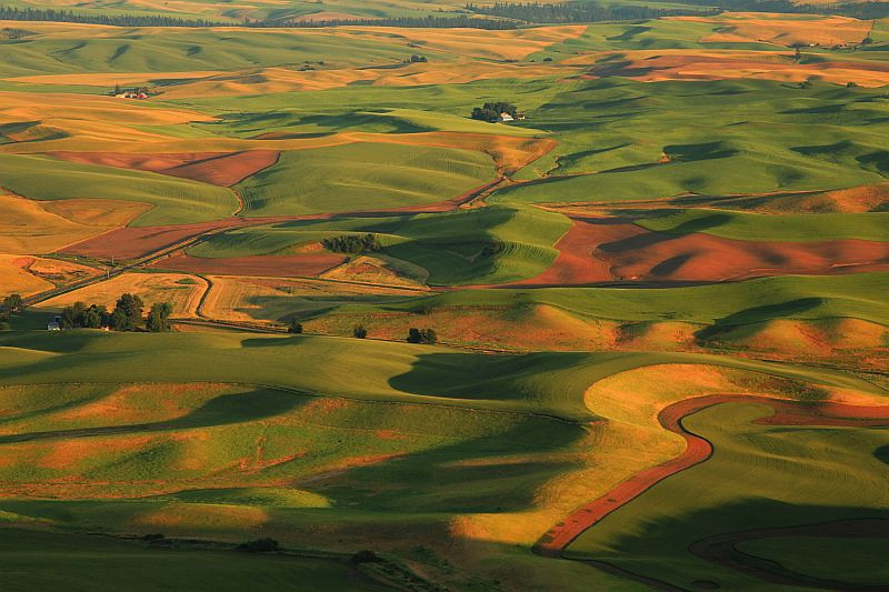 """<a href=""""http://www.photographycorner.com/forum/showthread.php?t=105806"""">Steptoe Butte</a> by <a href=""""http://www.photographycorner.com/forum/member.php?u=337"""">squirl033</a>"""