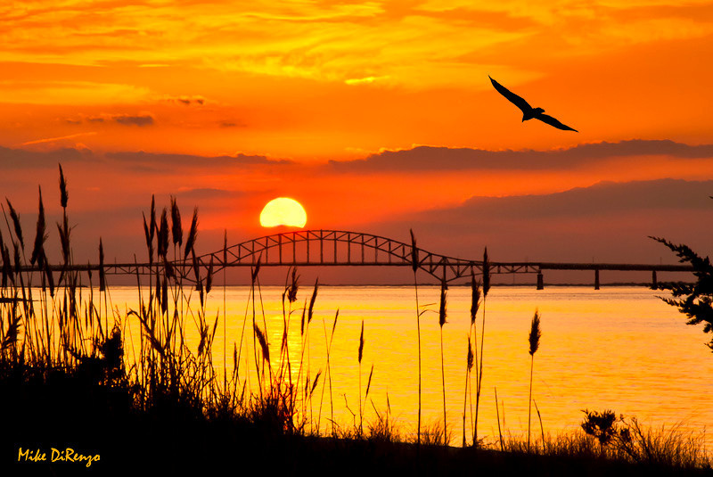 "<a href=""http://www.photographycorner.com/forum/showthread.php?t=103152"">Fire Island Sunset</a> by <a href=""http://www.photographycorner.com/forum/member.php?u=20080"">Bozzzzz</a>"