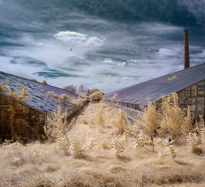 "<a href=""http://www.photographycorner.com/forum/showthread.php?t=106753"">Green House Gas IR Color</a> by <a href=""http://www.photographycorner.com/forum/member.php?u=20091"">mrchile</a>   <font size=""+2"">WINNER of the <a href=""http://www.photographycorner.com/photograph-of-the-month/2012/11/green-house-gas-ir-color"">November 2012 Photograph of the Month</a> contest!</font>"