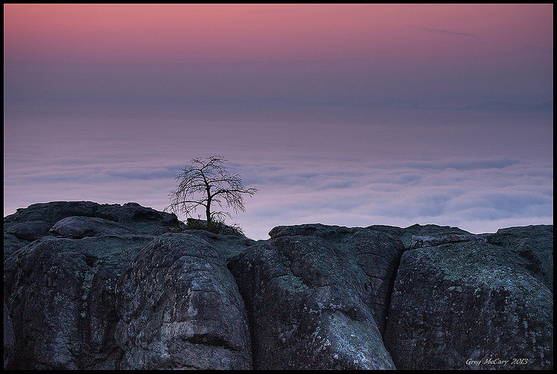 "<a href=""http://www.photographycorner.com/forum/showthread.php?t=110483"">Little Tree Above the Clouds</a> by <a href=""http://www.photographycorner.com/forum/member.php?u=9463"">cosmonaut</a>   <font size=""+2"">WINNER of the <a href=""http://www.photographycorner.com/photograph-of-the-month/2013/10/little-tree-above-the-clouds"">October 2013 Photograph of the Month</a> Contest.</font>"