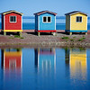 Newfoundlands by FredricaS