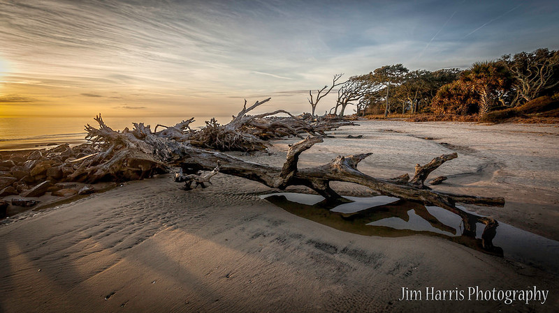 "<a href=""http://www.photographycorner.com/forum/showthread.php?t=113979"">Driftwood Beach</a> by <a href=""http://www.photographycorner.com/forum/member.php?u=12688"">jaharris1001</a>"