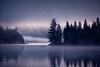 Misty Morning by Cup4tml