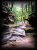 """Stopping by Woods by <a href=""""http://www.photographycorner.com/forum/member.php?u=7712"""">rynida</a>"""