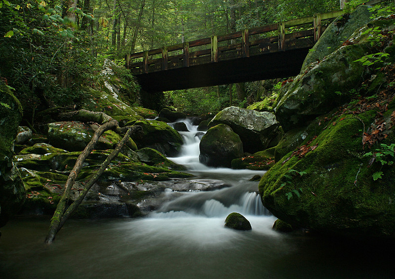 "Round 1, Group XI Winner Roaring Fork Cascade by <a href=""http://www.photographycorner.com/forum/member.php?u=586"">winger</a>"