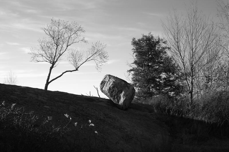 "A Sombra do Vento by <a href=""http://www.photographycorner.com/forum/member.php?u=8686"">nick5309</a>"