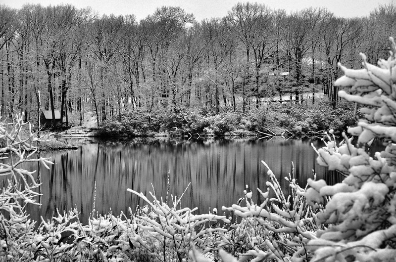 "Lake Side Snow Reflections by <a href=""http://www.photographycorner.com/forum/member.php?u=11148"">Bill Pador</a>"