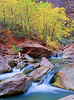 """Virgin River Autumn, Zion Canyon by <a href=""""http://www.photographycorner.com/forum/member.php?u=10711"""">BeachBill</a>   Check out the <a href=""""http://www.photographycorner.com/forum/showthread.php?t=81075"""">final voting results for Round 1, Group I</a> of the <a href=""""http://www.photographycorner.com/2008-photograph-of-the-year"""">2008 Photograph of the Year Contest</a> to find out where this photograph placed.  Also make sure to check out the <b><a href=""""http://photographycorner.smugmug.com/gallery/7169189_ALAW4"""">top 20 finalists</a></b> from the <a href=""""http://www.photographycorner.com/2008-photograph-of-the-year"""">PhotographyCorner.com 2008 Photograph of the Year</a> contest!"""