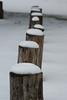 "Winter 2009 by <a href=""http://www.photographycorner.com/forum/member.php?u=10083"">Tj_Delikat</a>"