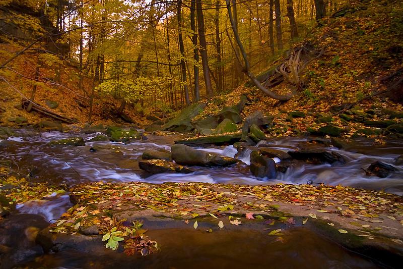 "A River Runs Through by <a href=""http://www.photographycorner.com/forum/member.php?u=3565"">Spicoli</a>"