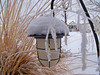 "Snow on a Solar Lite by <a href=""http://www.photographycorner.com/forum/member.php?u=15148"">sally7kids</a>"