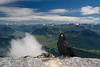 """Greetings from the Tops of the Alps by zaplig  <a href=""""http://www.photographycorner.com/forum/showthread.php?t=96302"""">See the Round 1 Voting Results here</a>"""