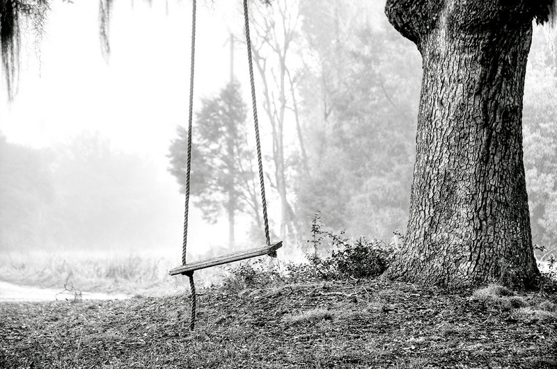 "Coosaw - Tree Swing by shutterbug99  <a href=""http://www.photographycorner.com/forum/showthread.php?t=96308"">See the Round 1 Voting Results here</a>  <a href=""http://www.photographycorner.com/forum/showpost.php?p=675048"">ROUND 1, GROUP G FINALIST</a>"