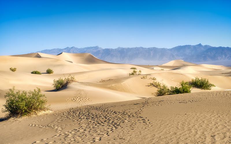 The Mesquite Sand Dunes