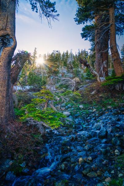 A small creek near Lois Lake at Sunset