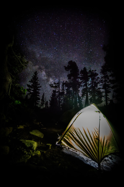 Desolation Nights