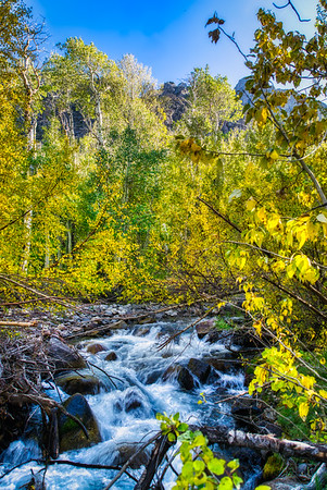 McGee Creek and the fall colors