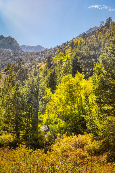 A fall afternoon along the Little Lakes Valley Trail
