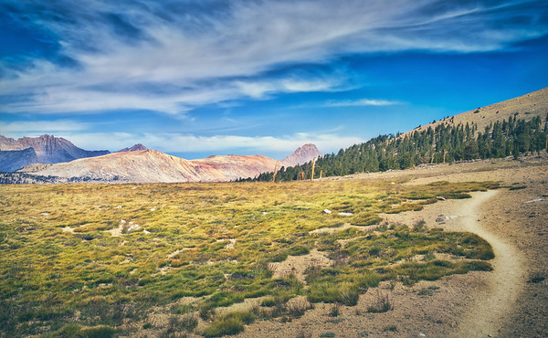 Looking North along the JMT from Bighorn Plateau