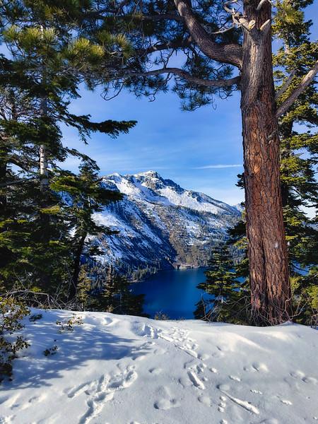 Fallen Leaf Lake from Angora Ridge