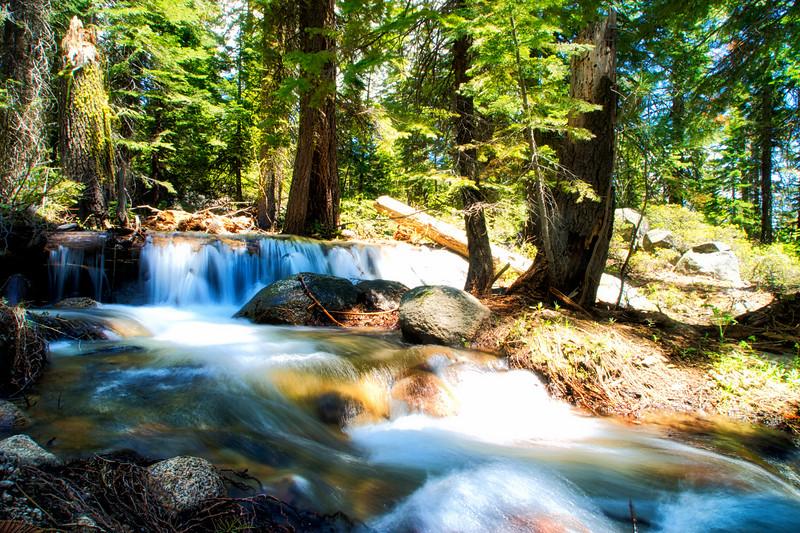 Spring runoff near Cole Creek