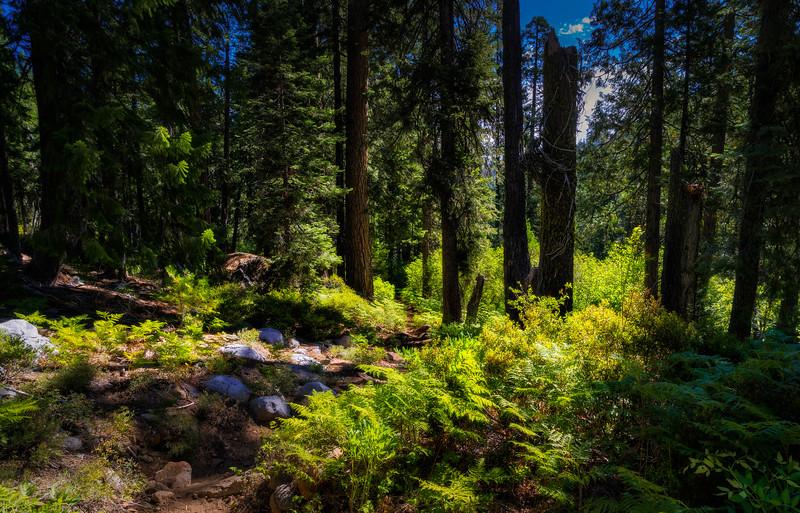 Granite Creek Trail