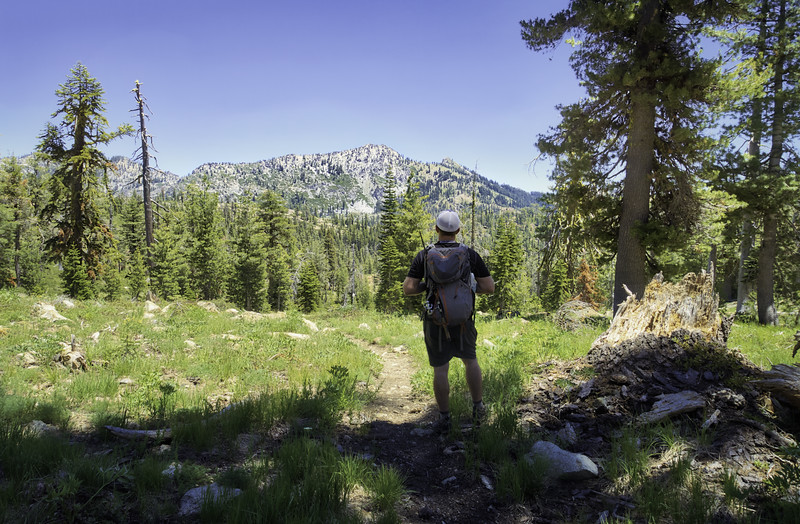 Taking in the view across the Trinity Alps from near Landers Lake