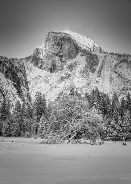 A snowy Half Dome in the afternoon sunlight (Black and White)