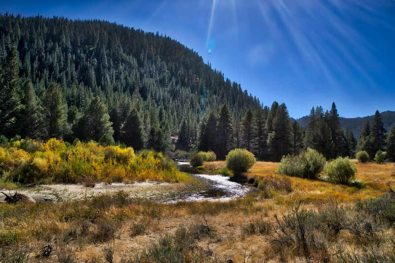 The afternoon sun over the East Fork of the Carson River